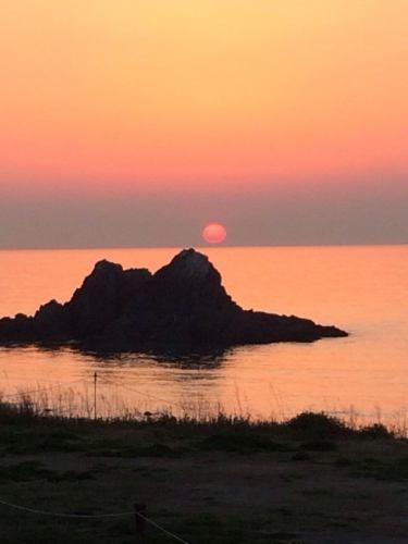 HonaCafe糸島