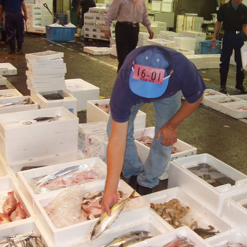 Seasonal seafood to purchase every morning
