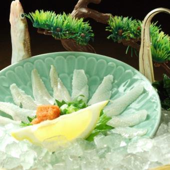 康吉斯與生魚片