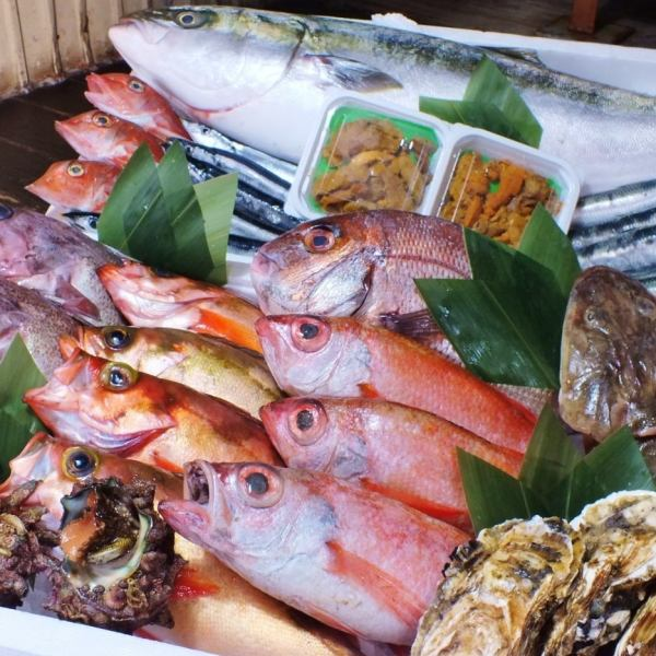 各種各樣的季節性生魚片(3格/ 5格)
