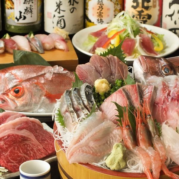 Autumn banquet is local wine x local fish! 【Earth fish's handful sushi / autumn sweetfish / Yue's chicken tango】 8 cuisines + 10 kinds of local wine including 2 hours All you can drink 3980 yen