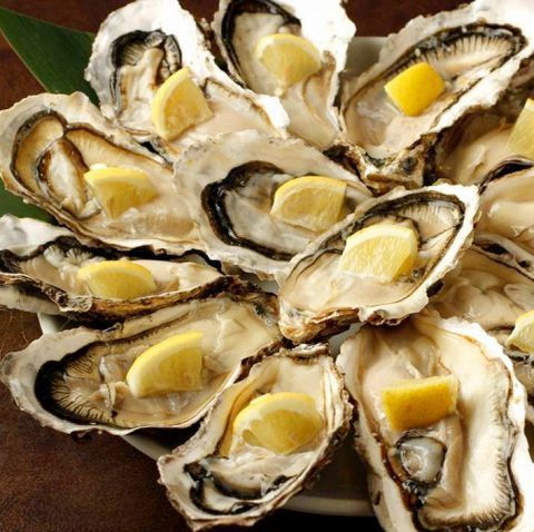 Direct fisherman raw oyster 1P