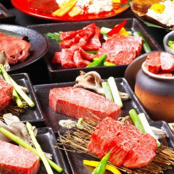 [동백 코스] 시라 오이 소 주사위 스테이크, 등심, 갈비, 쇠고기 등 요리 8 종 120 분 맘껏 마시기 5000 엔