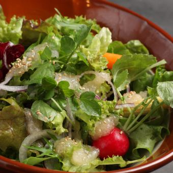 Leaf vegetable salad