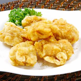 닭고기 튀김