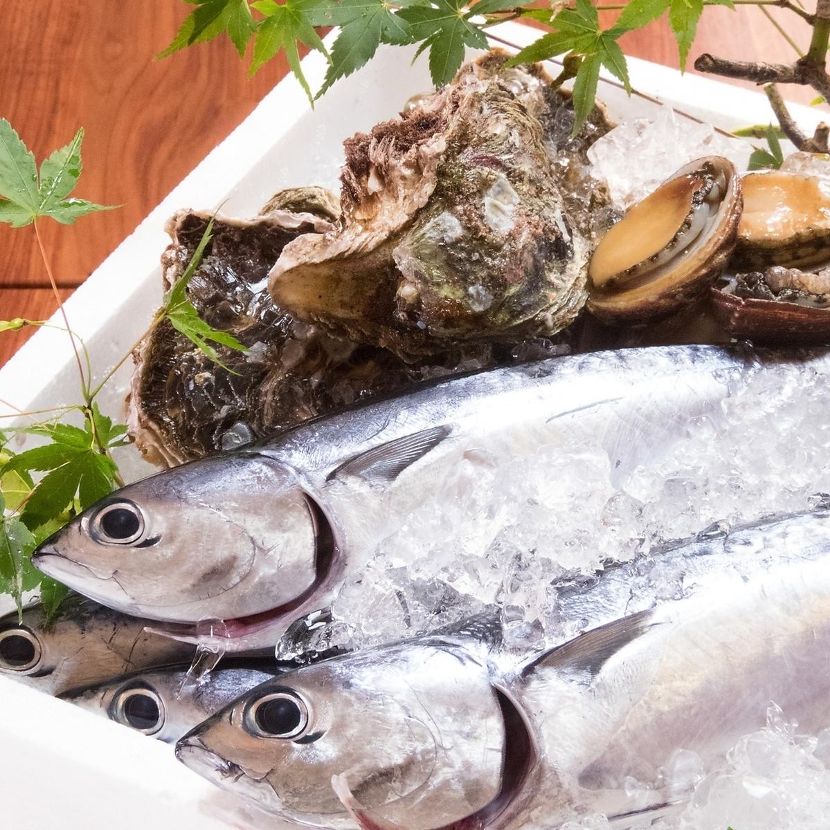 Fish fish sashimi