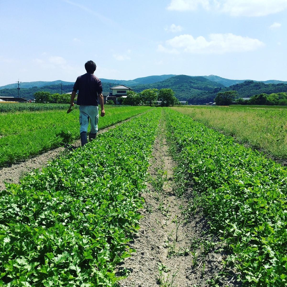 Eguchi Farm