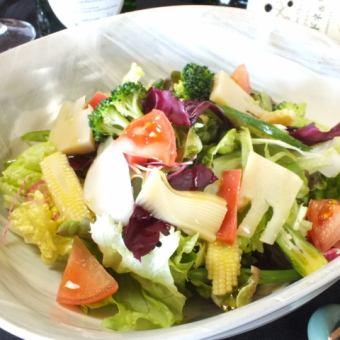 畑の恵。十菜サラダ ウマミ出汁ドレッシング