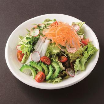 おまかせ野菜10品目の健康サラダ