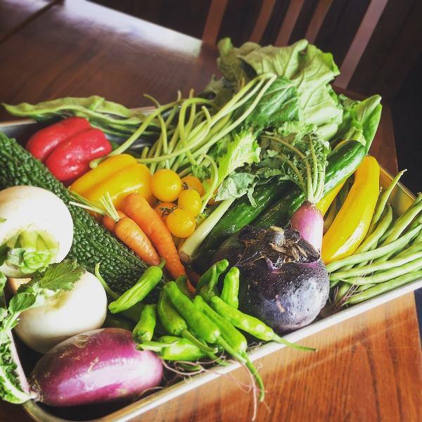 [享受新鮮蔬菜]的有機烤蔬菜農場憲章