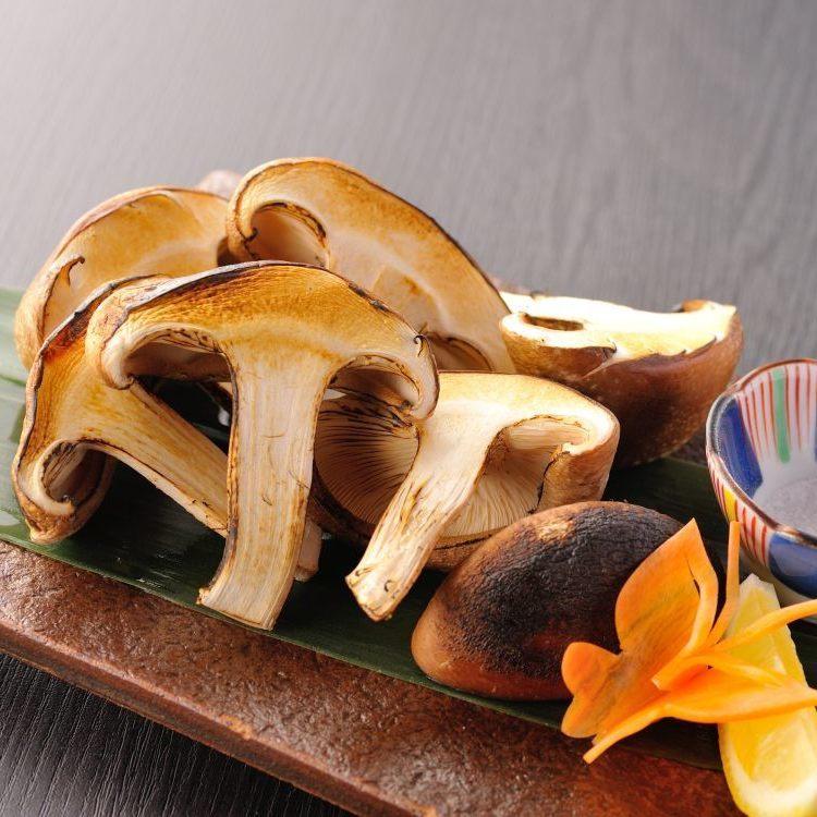 Oversized wood shiitake