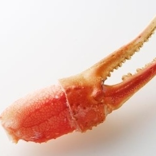 ズワイ蟹の爪