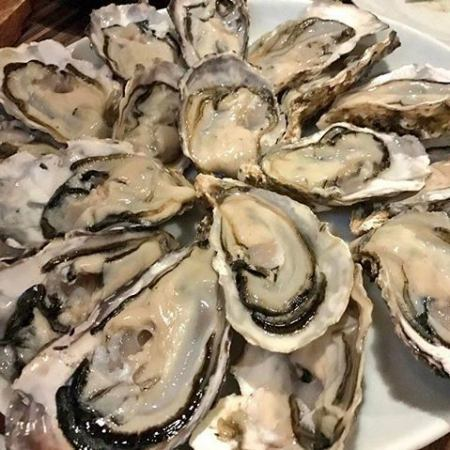 【Akasaka Lowest Price on the day】 OK! All you can eat raw oysters! Use coupon beforehand 120 minutes 2,980 yen!