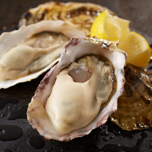 Raw oysters throughout the country [Akasaka has 1st deca oyster]
