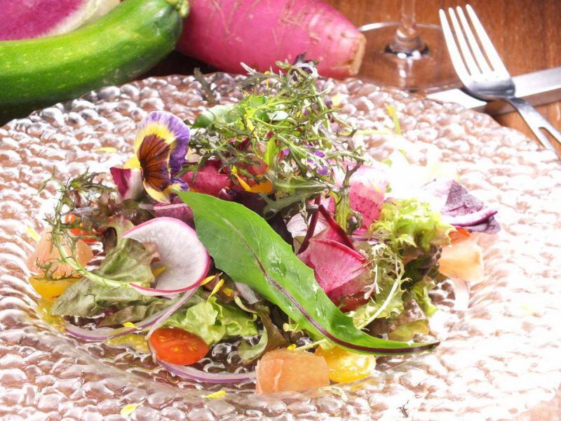 Fresh organic vegetables prime salad