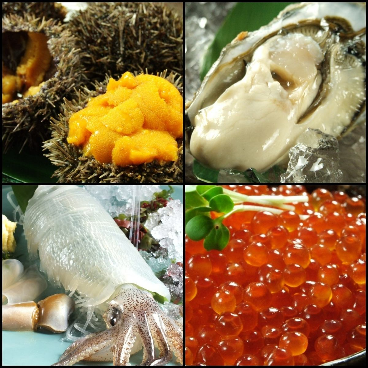 承諾購買!季節性農場的新鮮食材!享受的味道,比如在海灘上的味道!