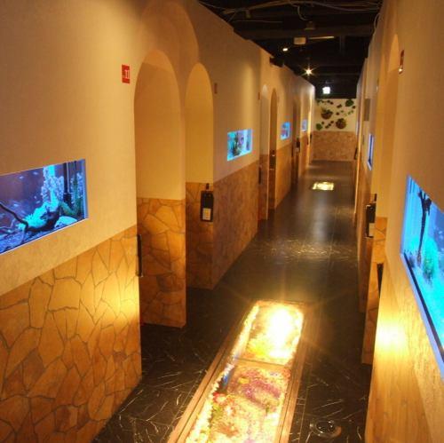 室内・廊下共に幻想的な空間です♪