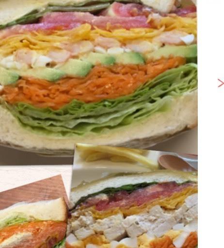 Various sandwich plates