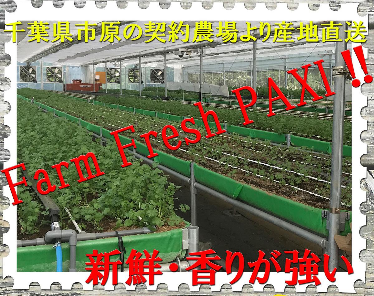 Chiba Prefecture Origin direct shipment Pakuti ♪