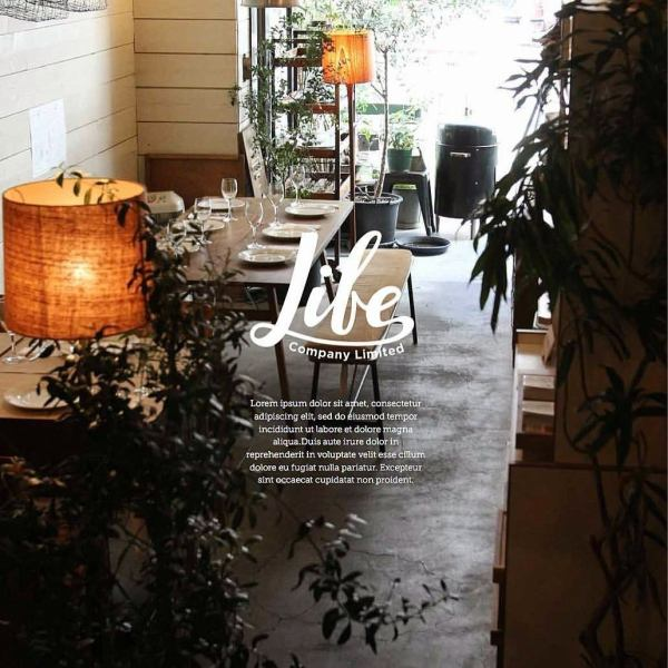幅広い層から支持される『居心地よい』店内。木と緑に囲まれ、小さなインテリアにも居心地の良さを演出。お客様の層に合わせたBGMの選曲。お客様のニーズに合わせたサービスとお料理の味付け。食事のクオリティとサービスが相成って醸し出される店内雰囲気はLIFEならではの雰囲気です。小さなお子様も来店出来ますのでお気軽にお越し下さい。