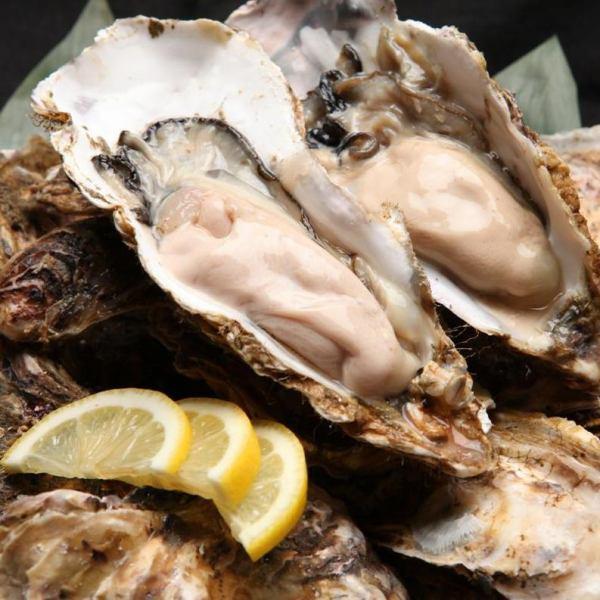 厚岸産!焼き牡蠣、蒸し牡蠣。厚岸佐藤水産直送で、ぷりっぷりの食感を楽しめます