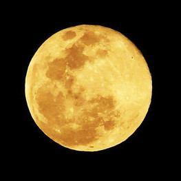 【プレミアムVIPプラン】満月の夜にはおひとり様10000円にて終日極上のリラックス感で好きな酒を