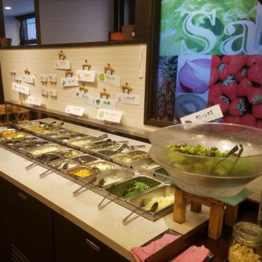 Variety of salad bars are abundant! Nutritional balance is perfect.