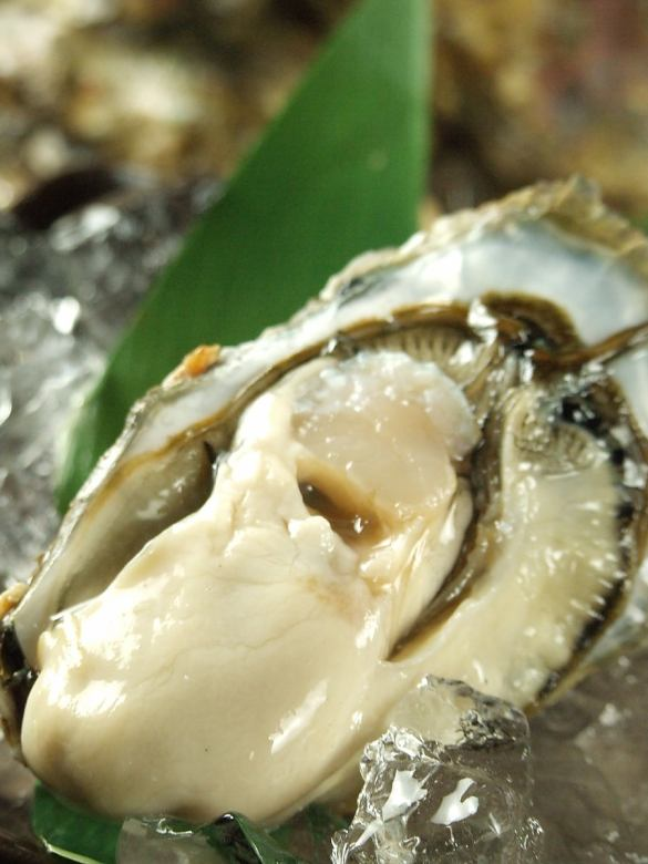 厚岸産牡蠣(生・焼)
