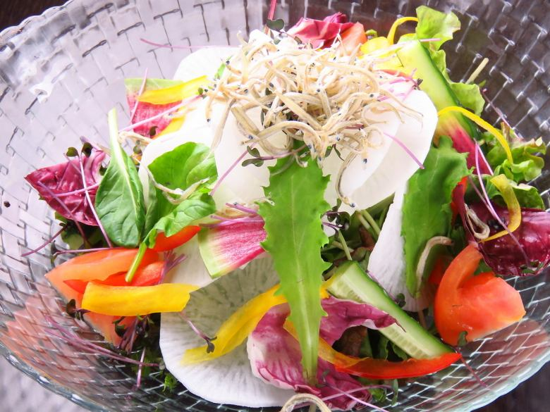 Shakijaki radish and shrimp salad