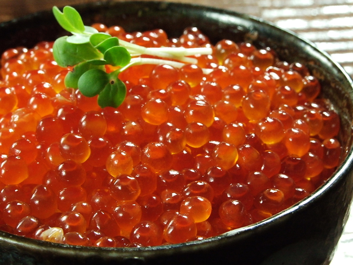 수제 연어 알 덮밥