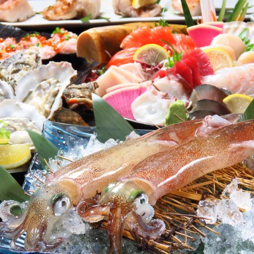 December Limited Okinoshi oyster / sashimi 8 points · horse sting 【120 minutes drinking with 5000 yen】