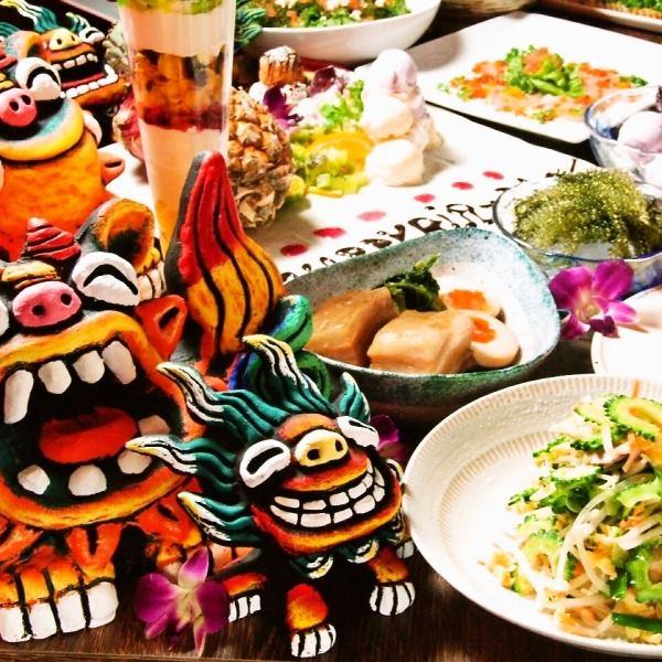 稀有性,12小时仔细戈雅Chample〜·炖rafute-提达专用通信偏好冲绳创意美食,所有菜品70