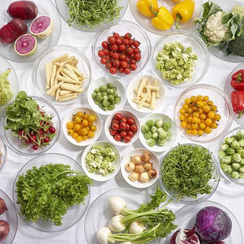 【平日限定】有機野菜を厳選したサラダブッフェランチ