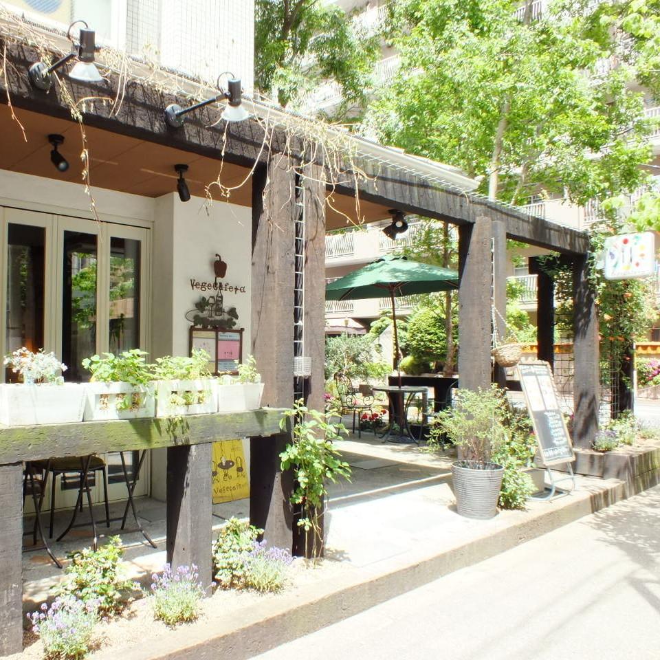 内部绿色和丰富的商店和外观