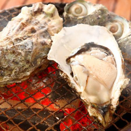 契約漁業から直送「海のミルク」牡蠣オールスターコース4980円(税込)【+1800円で2H飲放付♪】