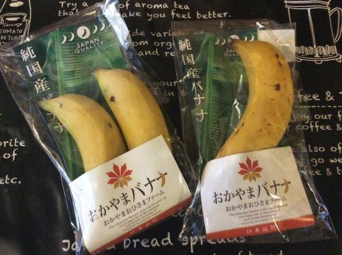 岡山の特産フルーツ!皮ごと食べられる「岡山バナナ」