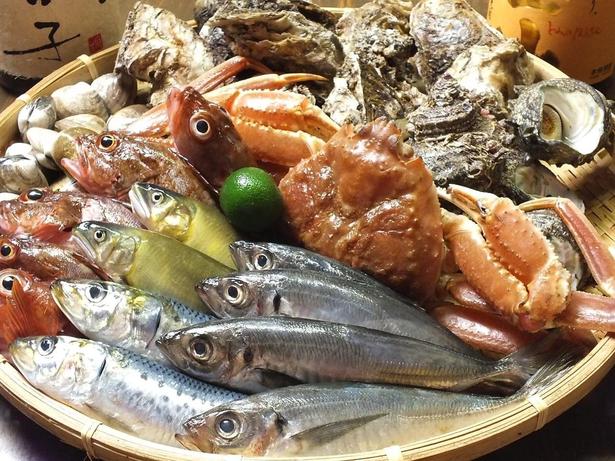 Active Sasae / oversized scallops / natural big shrimp / book tuna / gold eye bream bear / shell with oyster /
