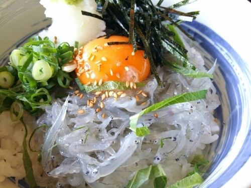 梅しそ雑炊/鶏雑炊/鯛ダシ茶漬け/音戸産生シラス丼/鯛にゅうめん