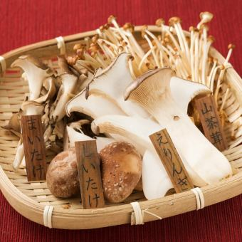 4 종의 약선 모듬 버섯