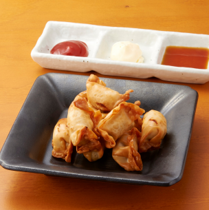 Hakata Fumigi fried dumplings