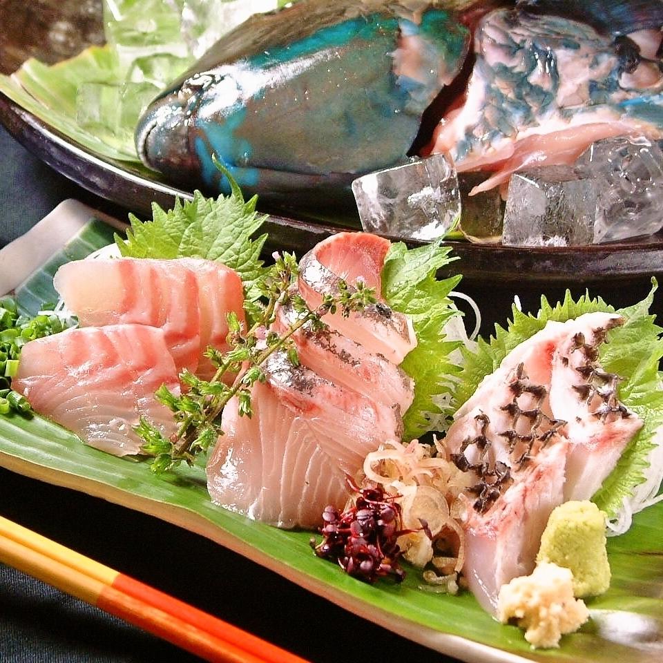 오키나와 직송! 섬 생선 사시미