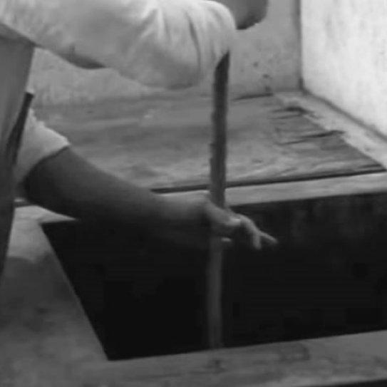 八丈島伝統のくさや液を使用した「くさや」です