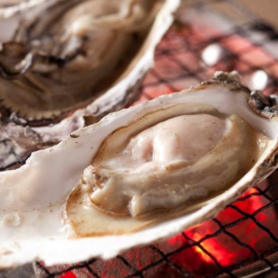 我們的內聯網中的牡蠣商店和來自Sengdeok漁業部的直接牡蠣都是炭化的