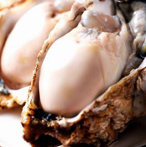 全年都有新鮮和誇耀的木炭豐富的牡蠣