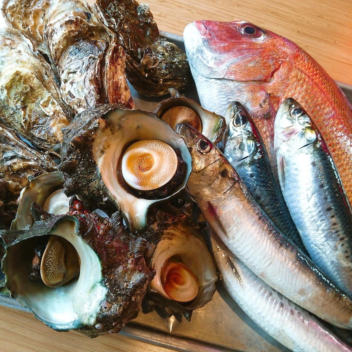 산지 직송의 신선한 생선을 사용