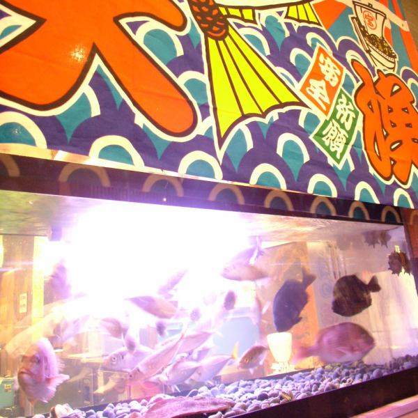 There is a tank in the shop.You can enjoy fresh seafood ♪