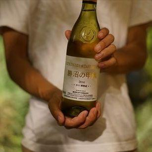 豐富的飲料,如葡萄酒