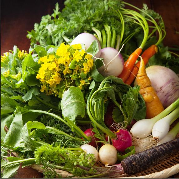[Colorfully vivid] Used plenty of Kamakura vegetables on the feature ♪