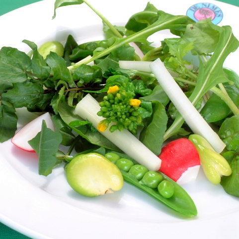 季節性沙拉配時令蔬菜