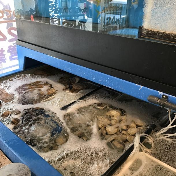 生簀(いけす)があるからできる活魚・活貝のご提供。さらに全国の漁港・漁師さんから厳選された旬の食材を直送してもうらうことで鮮度にこだわった料理をご提供させて頂きます。